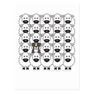 Perro de montaña de Bernese en las ovejas Postales