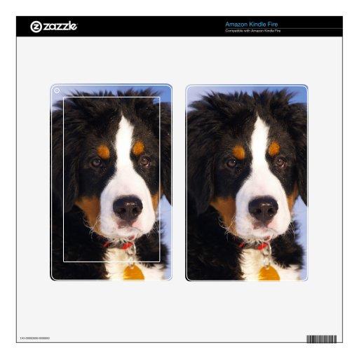 Perro de montaña de Bernese - foto linda del perri Skin Para Kindle Fire