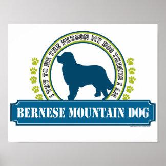 Perro de montaña de Bernese Póster
