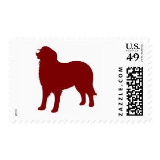 Perro de montaña de Bernese (rojo) Estampillas