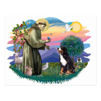 Perro de montaña de Bernese Postal