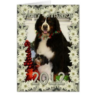 Perro de montaña de Bernese y foto del navidad de