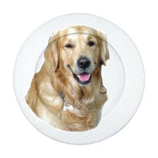 Perro de oro lindo de Labrador