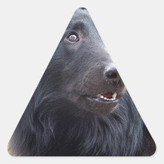 Perro de ovejas belga pegatina triangular
