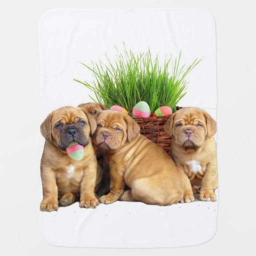 Perro de Pascua Dogue de Bordeaux Mantitas Para Bebé
