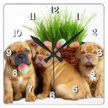 Perro de Pascua Dogue de Bordeaux Reloj Cuadrado