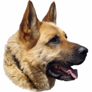 Perro de pastor alemán Alsatian Escultura Fotográfica