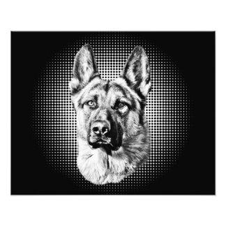 Perro de pastor alemán cojinete