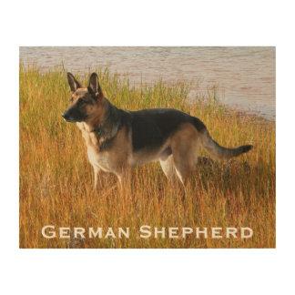 Perro de pastor alemán de madera de la impresión cuadros de madera