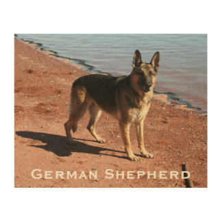 Perro de pastor alemán de madera de la impresión impresiones en madera