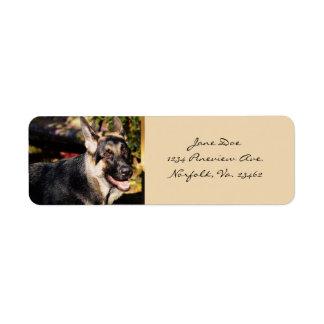 Perro de pastor alemán etiqueta de remitente