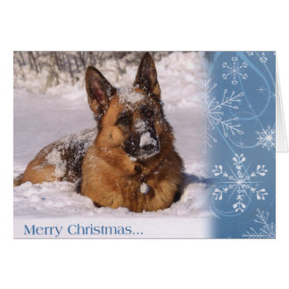 Perro de pastor alemán hermoso en nieve tarjeta de felicitación