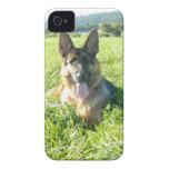 Perro de pastor alemán hermoso Case-Mate iPhone 4 protectores