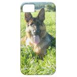 Perro de pastor alemán hermoso iPhone 5 Case-Mate carcasa