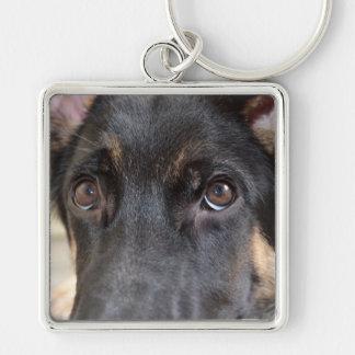 Perro de pastor alemán llavero cuadrado plateado