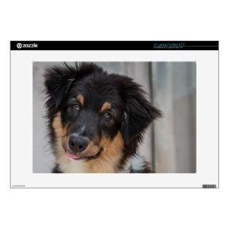 Perro de pastor australiano calcomanías para 38,1cm portátiles