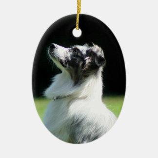 Perro de pastor australiano ornamentos de reyes magos