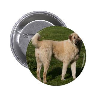 Perro de pastor de Anatolia Pin Redondo De 2 Pulgadas