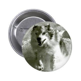 Perro de pastor que corre en nieve pins
