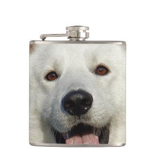 Perro de pastor suizo