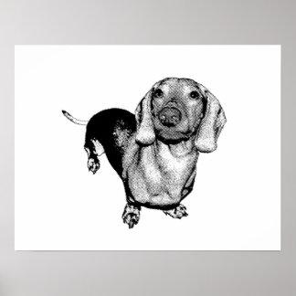 Perro de patas muy cortas blanco y negro de semito impresiones
