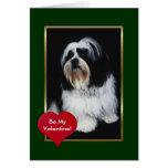 Perro de pelo largo blanco y negro adorable tarjetas