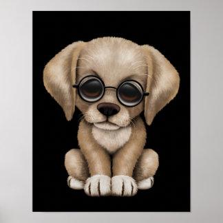 Perro de perrito amarillo del laboratorio con los  póster