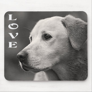 Perro de perrito amarillo del labrador retriever d tapetes de ratón