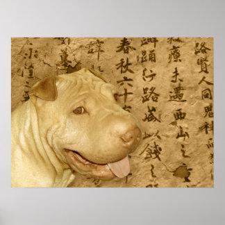 Perro de perrito antiguo de Shar Pei del chino Póster