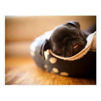 Perro de perrito chino negro del barro amasado el postales