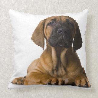 Perro de perrito almohada