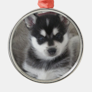 Perro de perrito de Alaska de Klee Kai Adorno Navideño Redondo De Metal