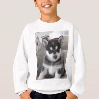 Perro de perrito de Alaska de Klee Kai Sudadera