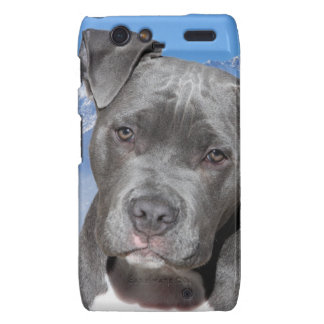 Perro de perrito de Pitbull Terrier del americano Motorola Droid RAZR Fundas