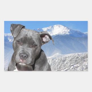 Perro de perrito de Pitbull Terrier del americano Pegatina Rectangular