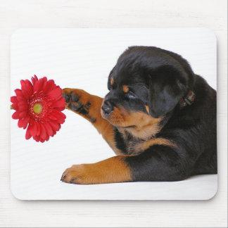 Perro de perrito de Rottweiler con la margarita Mo Tapete De Ratón