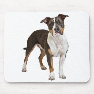 Perro de perrito de Staffordshire Terrier american Alfombrilla De Ratones