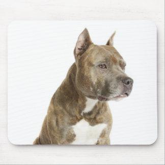 Perro de perrito de Staffordshire Terrier american Alfombrillas De Ratones