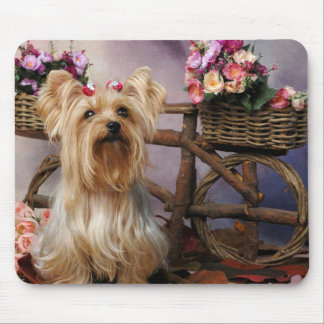 Perro de perrito de Yorkies del amor de Yorkshire Tapete De Ratones