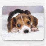 Perro de perrito del beagle tapetes de raton