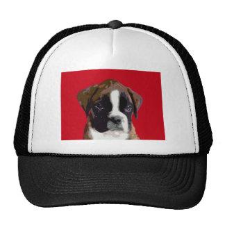 Perro de perrito del boxeador gorro