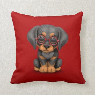Perro de perrito del Doberman con los vidrios de l Cojin