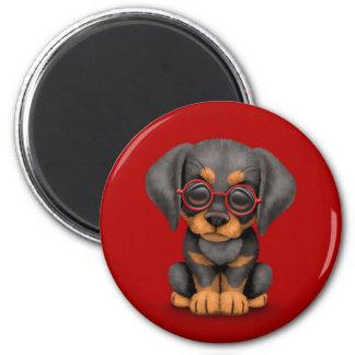 Perro de perrito del Doberman con los vidrios de l Imán Redondo 5 Cm