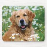 Perro de perrito del golden retriever alfombrilla de ratones