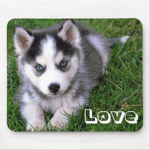 Perro de perrito del husky siberiano del amor Mous Alfombrilla De Ratones