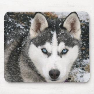 Perro de perrito del husky siberiano en la nieve M Tapete De Ratón