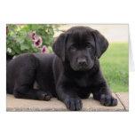 Perro de perrito del labrador retriever del negro tarjeta de felicitación