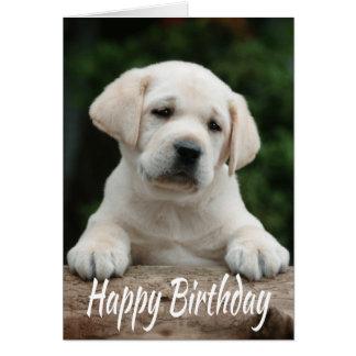 Perro de perrito del labrador retriever del tarjeta de felicitación