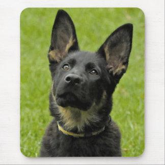 Perro de perrito del pastor alemán del amor alfombrillas de ratones