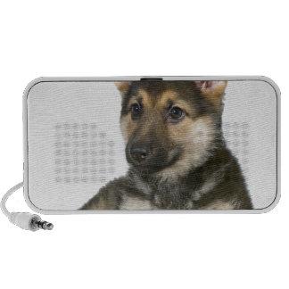 perro de perrito del perrito del pastor alemán altavoz